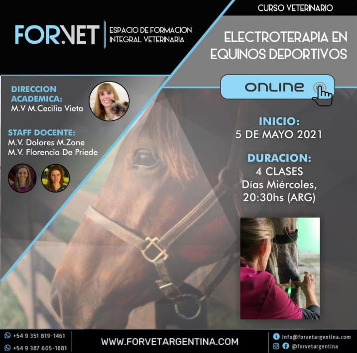 Electroterapia en Equinos Deportivos