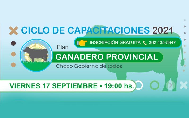 Seminario web: Plan Ganadero Provincial - Chaco